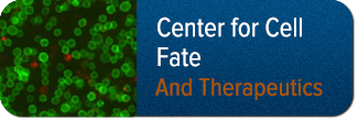 Center for Cell Fate and Therapeutics