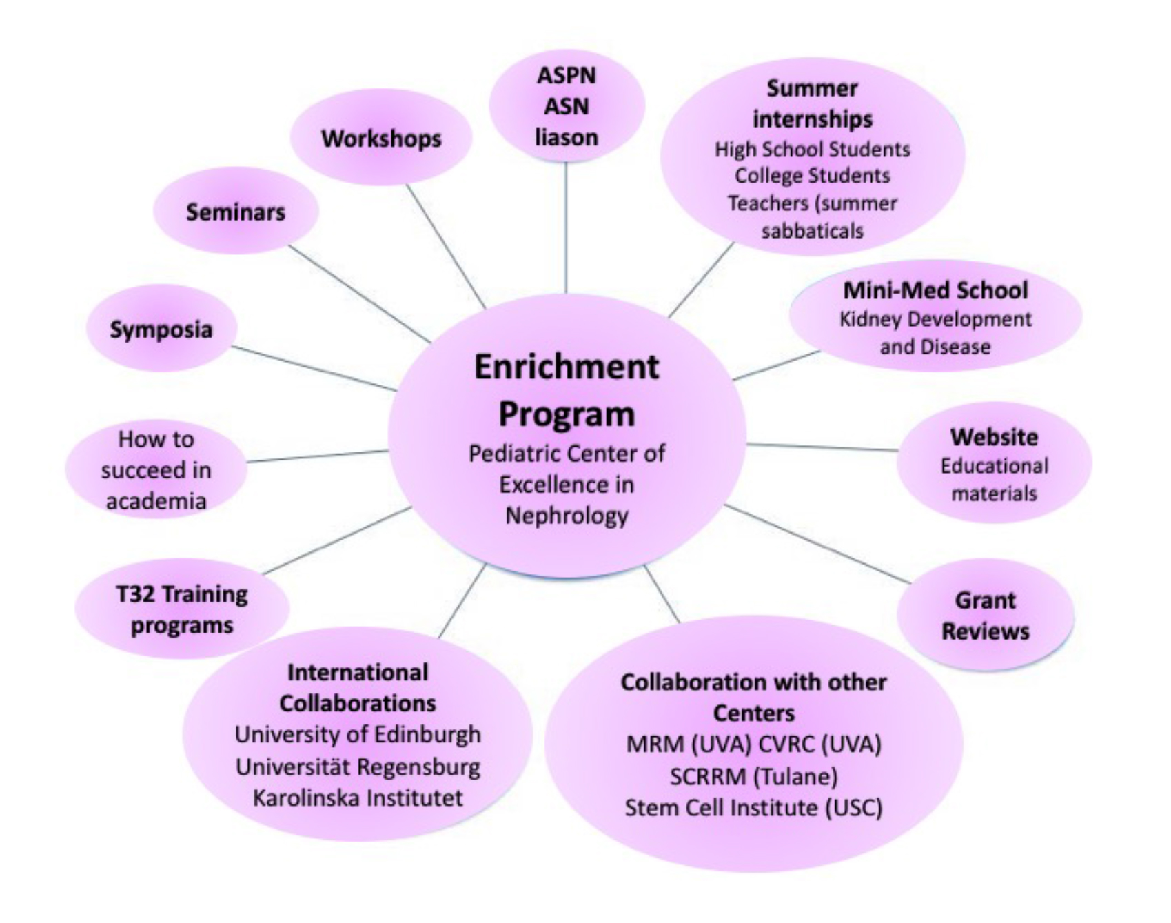 Microsoft Word - Enrichment Specific AIms FINAL.docx