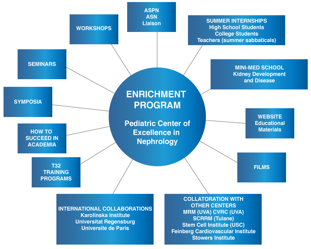 Diagram of Enrichment Program participants and modules
